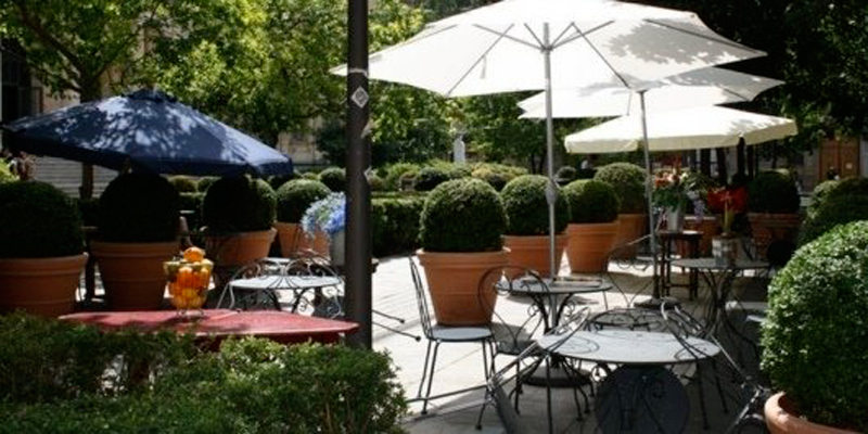 Brunch Le Cintra (69002 Lyon)