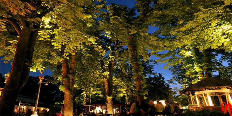 München Mangostin Asia Restaurant brunch