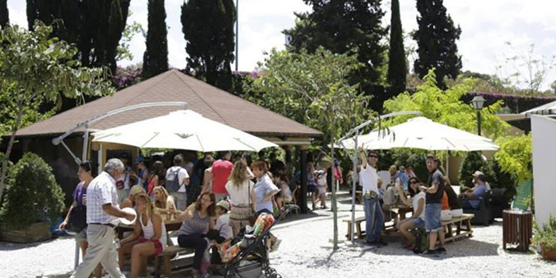 brunch Málaga Cafetería Jardín Botánico brunch