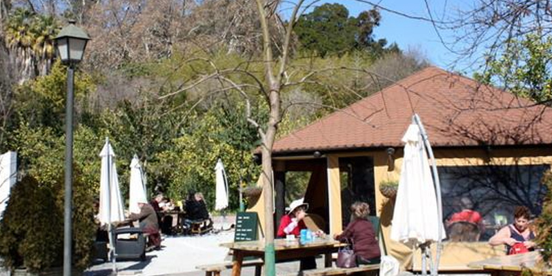 Málaga Cafetería Jardín Botánico brunch