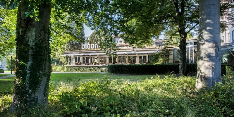 Brunch Bloom (8402 Winterthur)