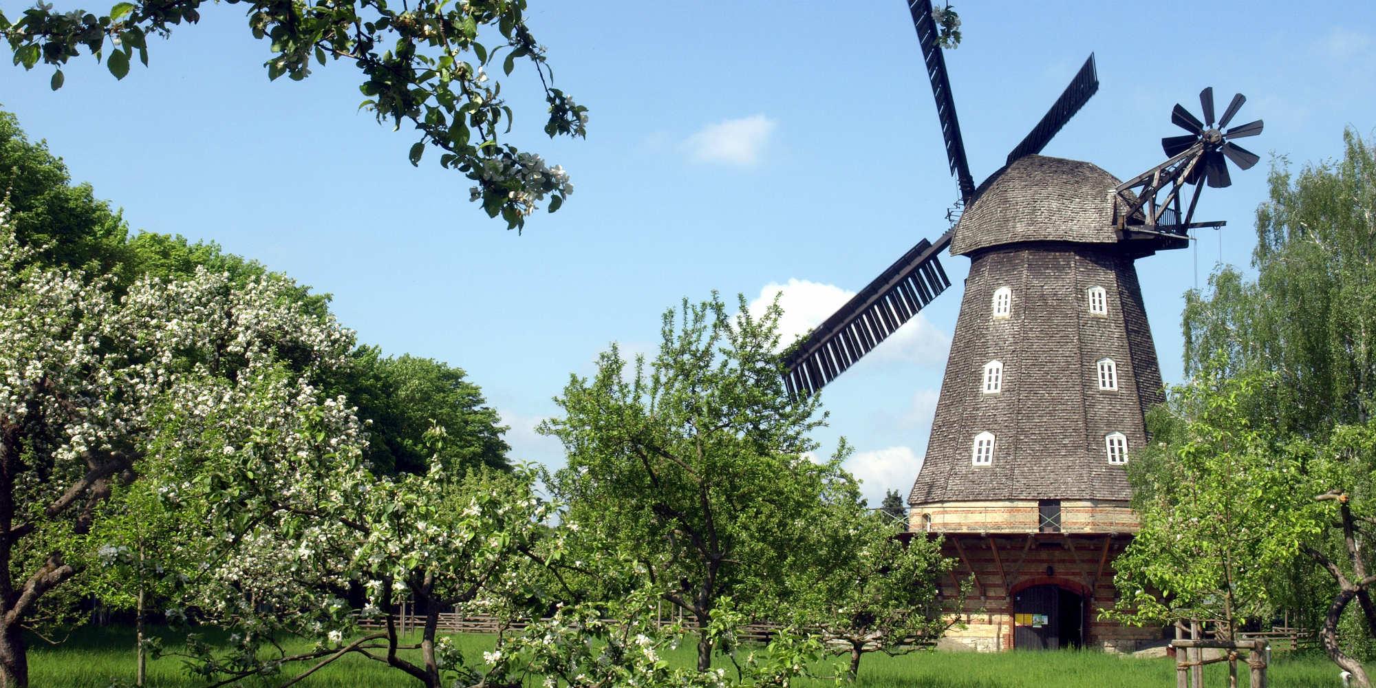 brunch Berlin Britzer Mühle brunch